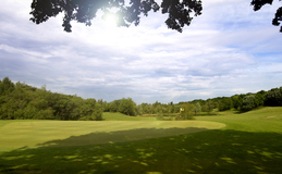Green fees - Golf de Guerville