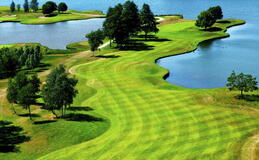 Green fees - Millennium Golf