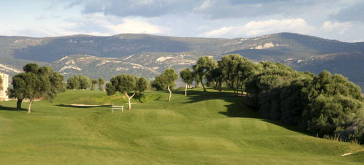 Green fees - Benalup Golf & Country Club