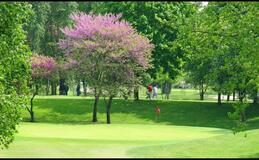 Green fees - Golf du Parc du Tremblay